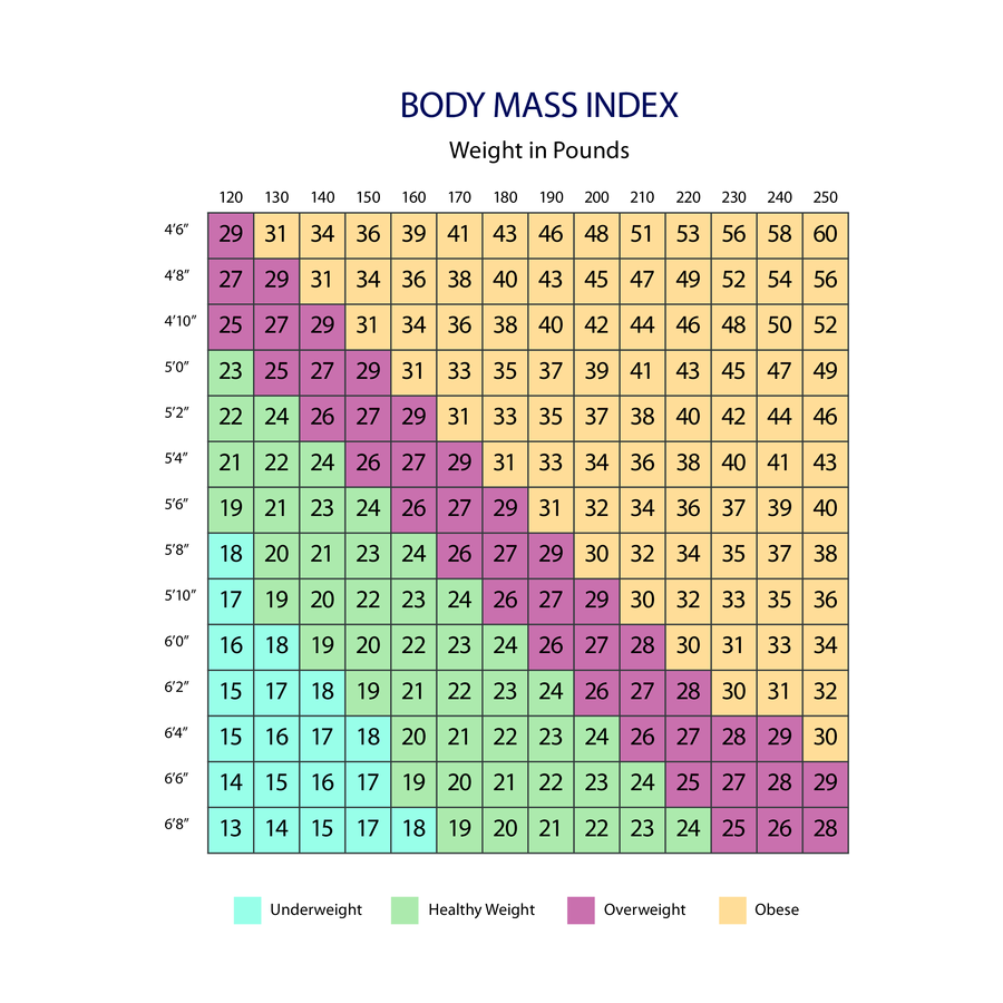 image relating to Printable Bmi Chart titled Bmi Chart-Body weight inside Fat - Edit, Fill, Signal On line Handypdf