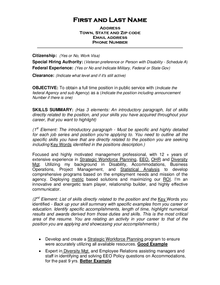 Federal Resume Template  Objective For Business Resume